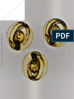 Biocompatibility of Photopolymers in 3D Printing