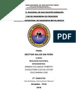 SECTOR SALUD ENSAYO 2.docx