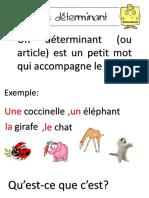 determinants.pptx