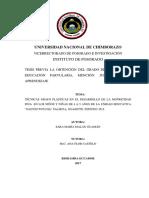UNACH-EC-IPG-CEP-2017-0013.pdf