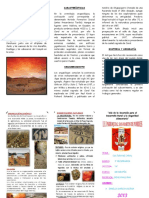 TRIPTICO CARAL.docx