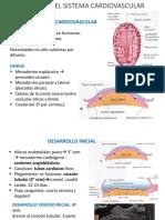 Desarrollo Del Aparato Cardiovascular (1)