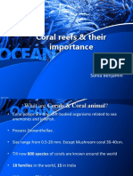 Coral PPT