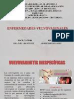 Enf.vulvovaginales