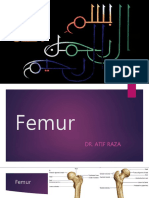 femur-151205075833-lva1-app6891