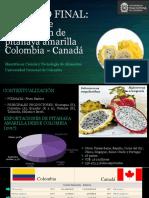 Pitahaya Colombia Canadá