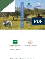 TESIS PROPAGACION DE ESTACAS.pdf