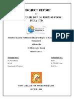 rinki final bttm report.docx