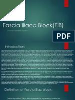 Fascia Iliaca Block(FIB)