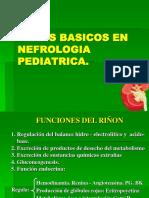 Temas Basicos en Nefrologia Pediatrica3