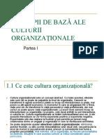 Suport de Curs - Organizational 1