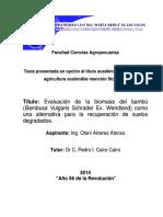 TESIS_COMPLETA_de_Otani_[1][1].pdf
