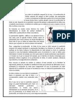 04 evaLUACIPON CORPORALCON..docx