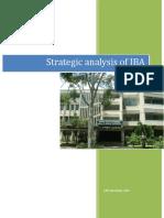 IBA_term_paper.docx