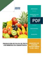 PULPA DE FRUTA - GARZON.docx