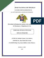 Cruz Gutierrez.pdf