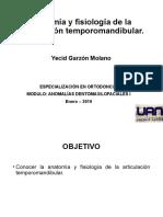 1. Seminario Anatomia y Fisiologia de La Atm - Yecid Garzon Molano