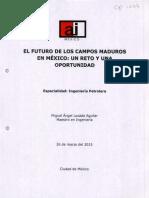 El futuro de los campos maduros .pdf