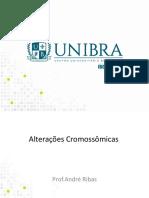 Aula 5 Unibra Alterações Cromossômicas