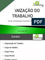 Organização do Trabalho (1).pdf