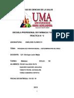 Informe Urea Sem9 Completo