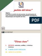 Copia de Toraxesqueleto 120614083411 Phpapp02