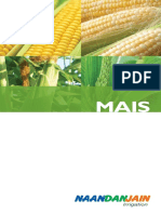 NDJ Corn Booklet It 270711
