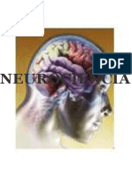 neurociencia-120518214628-phpapp02.pdf