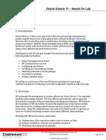 ips_lab.pdf