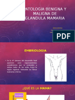 Patologia Benigna y Maligna de Glandula Mamaria