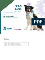 Chakras dogs.pdf