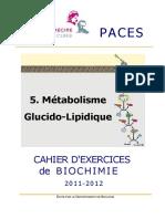 5_Metabolisme_2011-12.pdf