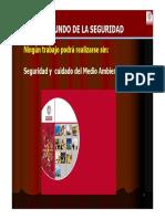 Inducción en Seguridad.pdf