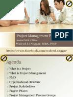 pmp 01 projectmanagementframework.pdf