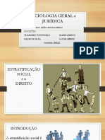 Trabalho Sociologia- Estratificação e o Direito