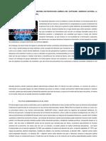 La Controversia Existente en Materia de Protección Jurídica Del Software. (Derecho Autoral vs Derecho de Propiedad Industrial).