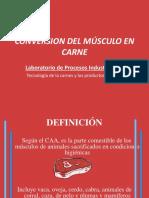 Conversion Del Músculo en Carne