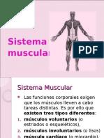 Sistema Muscular y Tegumentario
