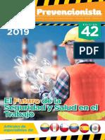 Revista prevencionista.pdf