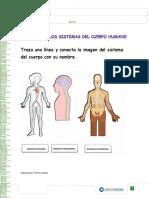 2 BASICO-EVALUACION.pdf