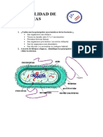 especialidad_de_bacterias.docx