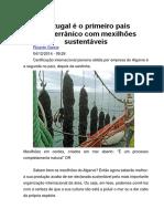 Portugal é o Primeiro País Mediterrânico Com Mexilhões Sustentáveis