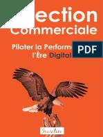 Direction Commerciale Piloter La Performance a Lere Digitale