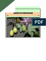 Módulo curso fitopatología.pdf