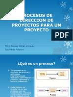 procesos de direccion de proyectos para un proyecto
