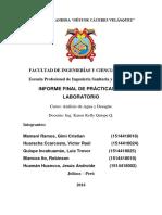 Informe Final de Análisis de Agua y Desagüe.pdf