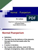 17 Normal Puerperium