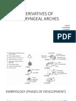 Derivatives of Pharyneal Arches