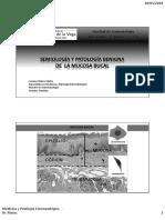 Lesiones Premalignas y Cáncer Bucal - UIGV2019