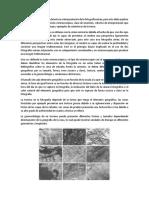 Fotointerpretación Tarea 3 - Ferney